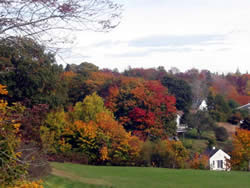 Autumn Color from our the back of the Kingsleigh Inn