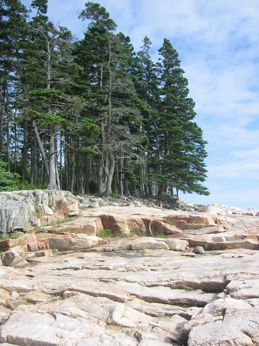 The gorgeous Seawall coast near Bass Head Light, about 3 miles south of the Kingsleigh Inn on Mount Desert Island